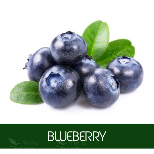 Laste aroomiõli Blueberry